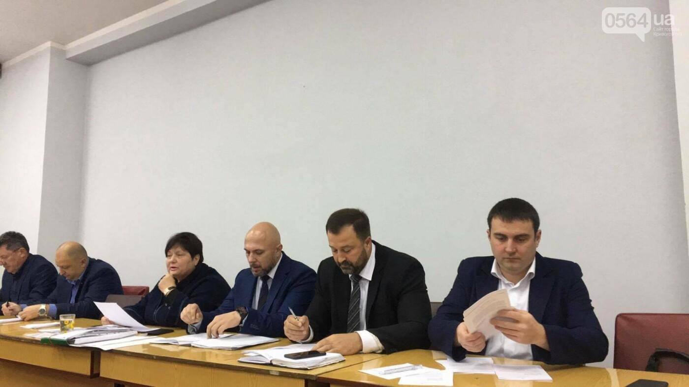 Увольнение Шовгели и бездомные коты, -  в Кривом Роге депутаты готовятся к пленарному заседанию (ФОТО), фото-3
