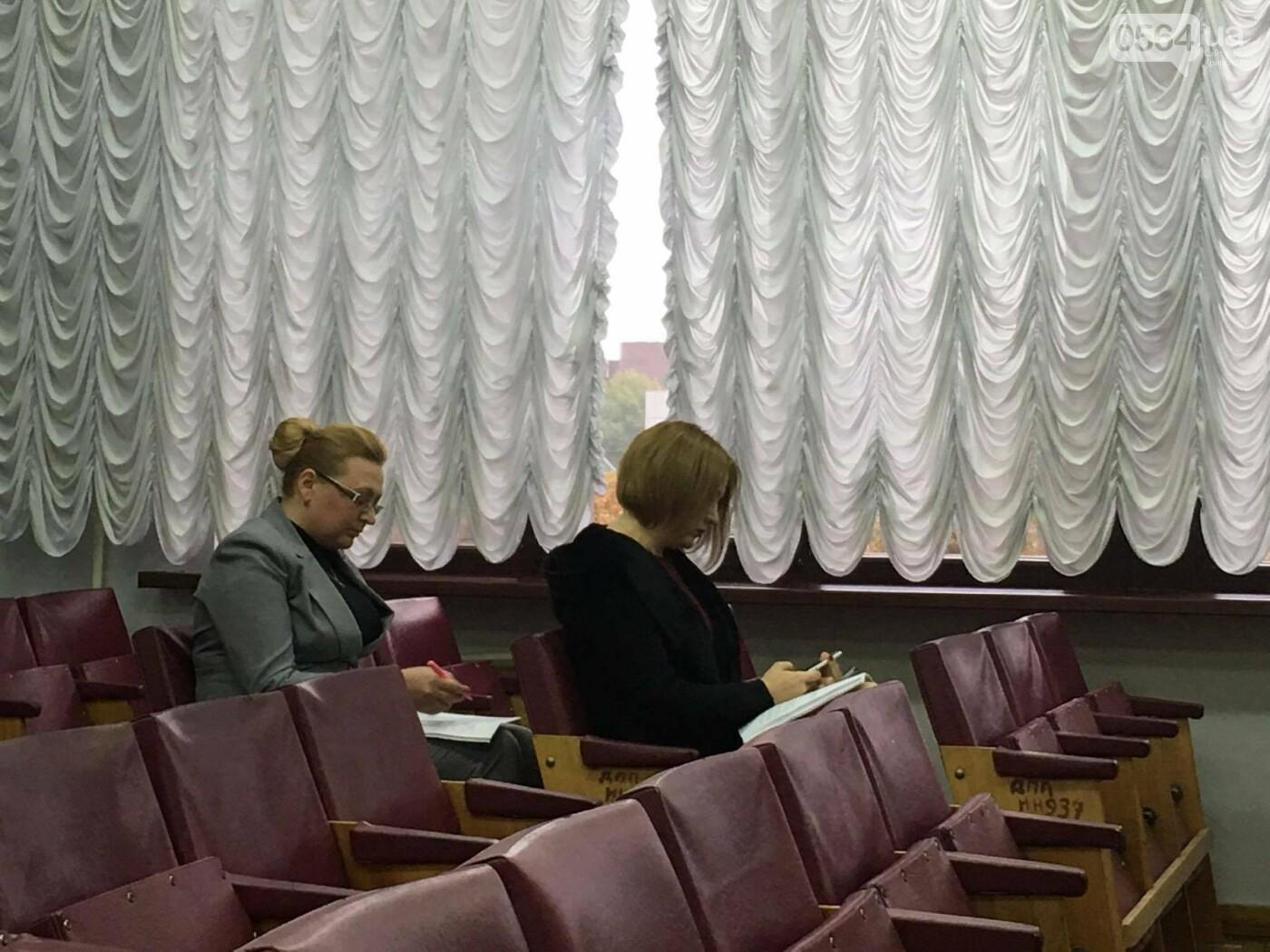 Увольнение Шовгели и бездомные коты, -  в Кривом Роге депутаты готовятся к пленарному заседанию (ФОТО), фото-13