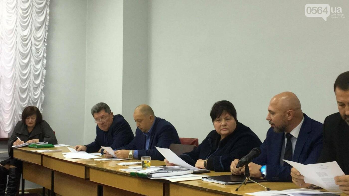 Увольнение Шовгели и бездомные коты, -  в Кривом Роге депутаты готовятся к пленарному заседанию (ФОТО), фото-10