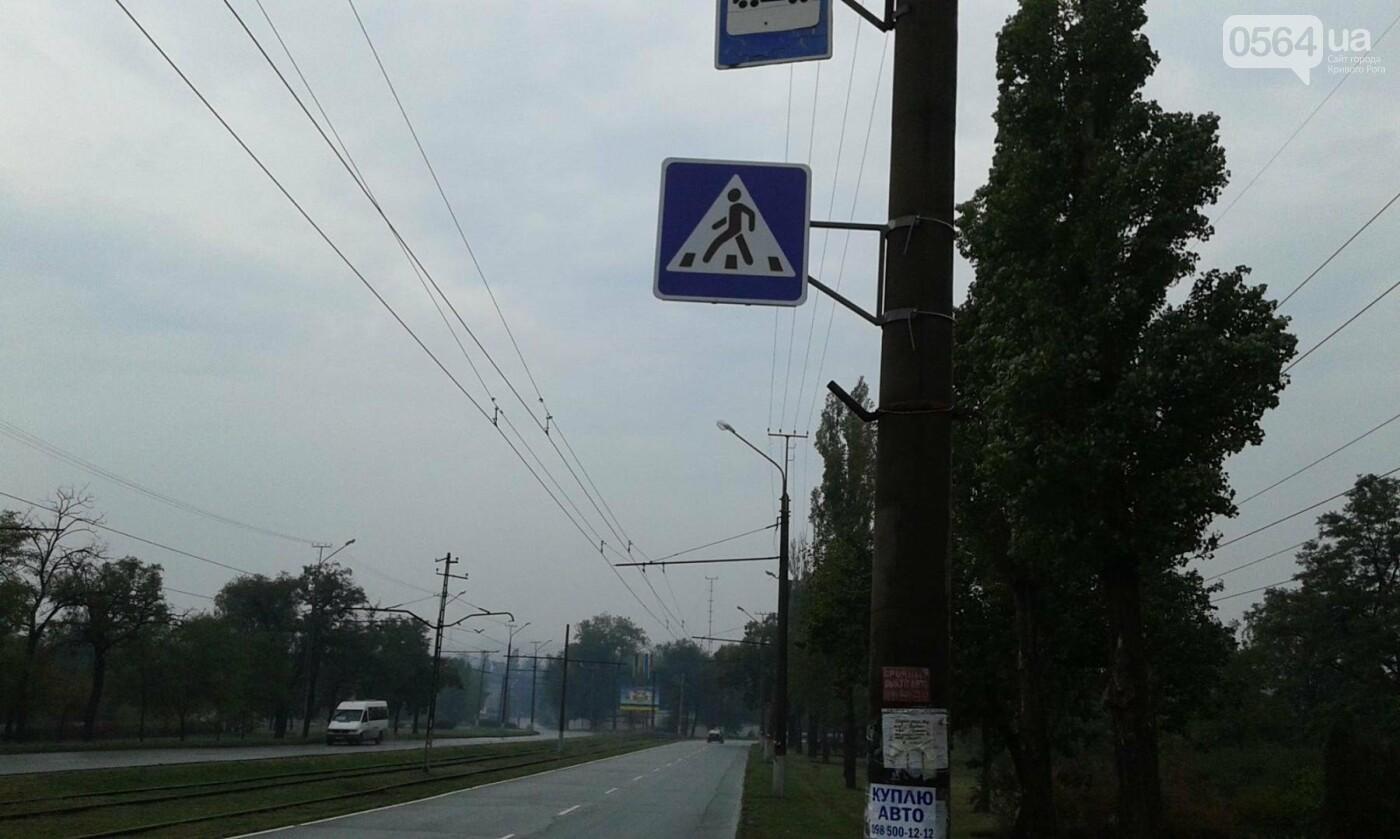 В Кривом Роге на опасном пешеходном переходе установили дорожные знаки (ФОТО), фото-3