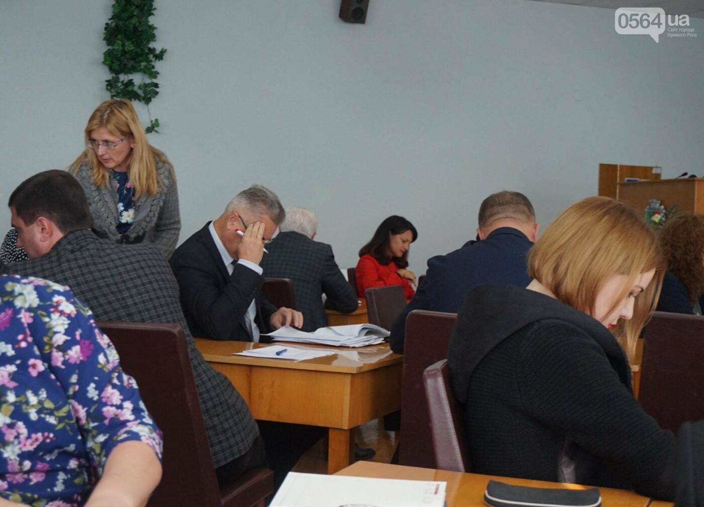 """""""Мы что, так хорошо отработали, что недостатков нет?"""" - криворожский мэр об итогах оздоровительной кампании (ФОТО), фото-1"""