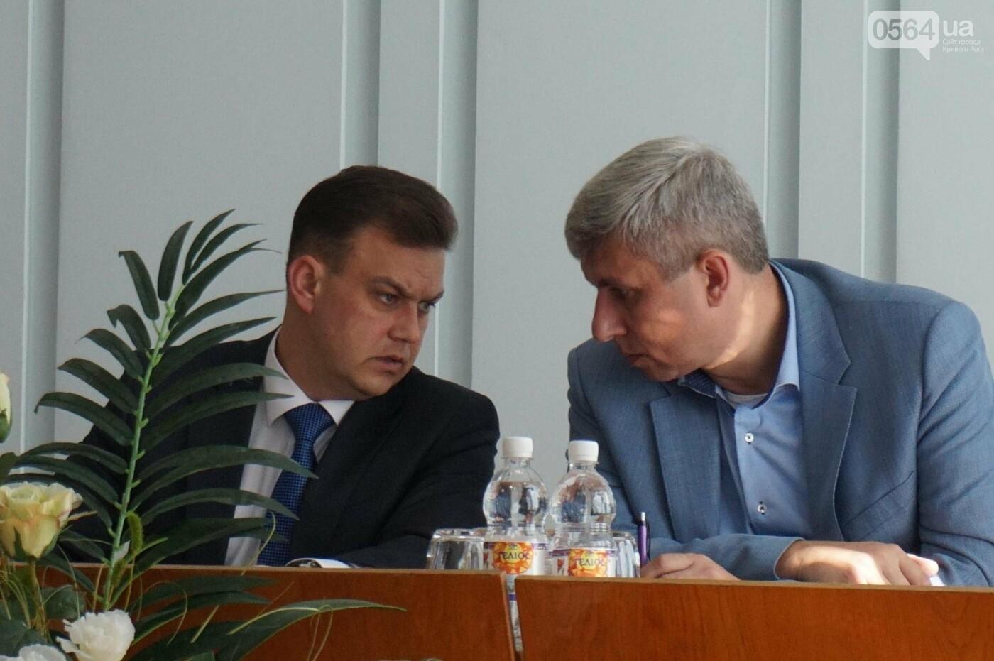 """""""Мы что, так хорошо отработали, что недостатков нет?"""" - криворожский мэр об итогах оздоровительной кампании (ФОТО), фото-5"""