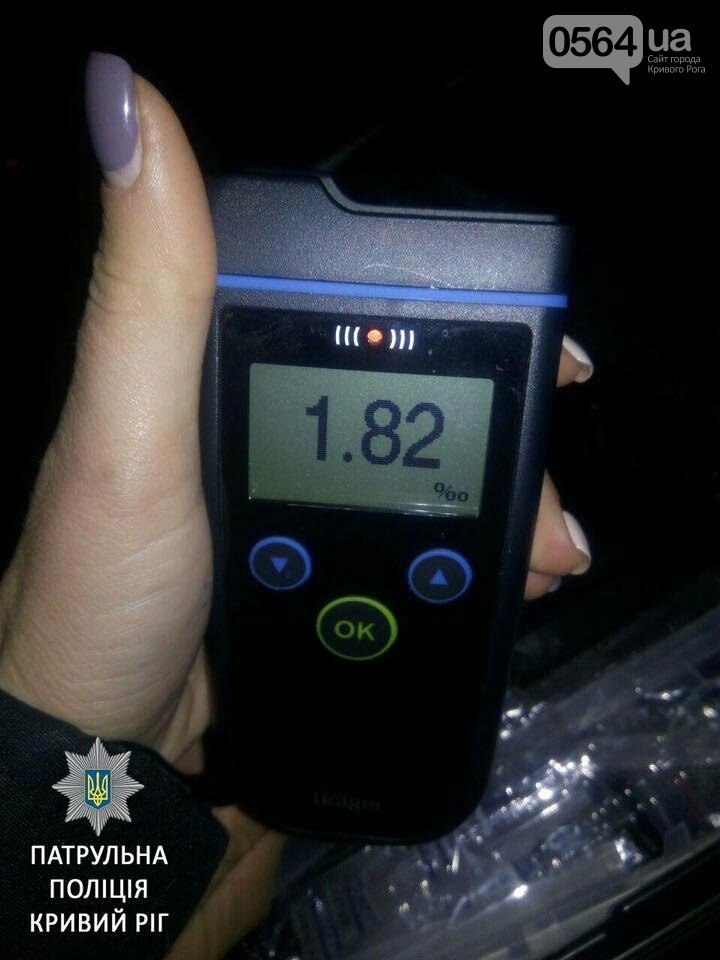 За ночь патрульные поймали троих пьяниц за рулем (ФОТО), фото-3