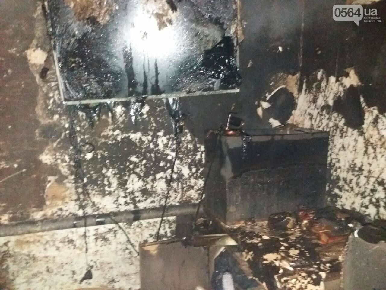 В Кривом Роге на пожаре обнаружили тело 40-летнего мужчины (ФОТО), фото-1