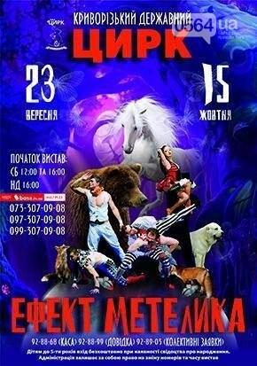 Фестиваль козацкой песни, легендарный матч, концерт Тины Кароль, марш за права животных: где криворожанам провести 3 выходных , фото-16