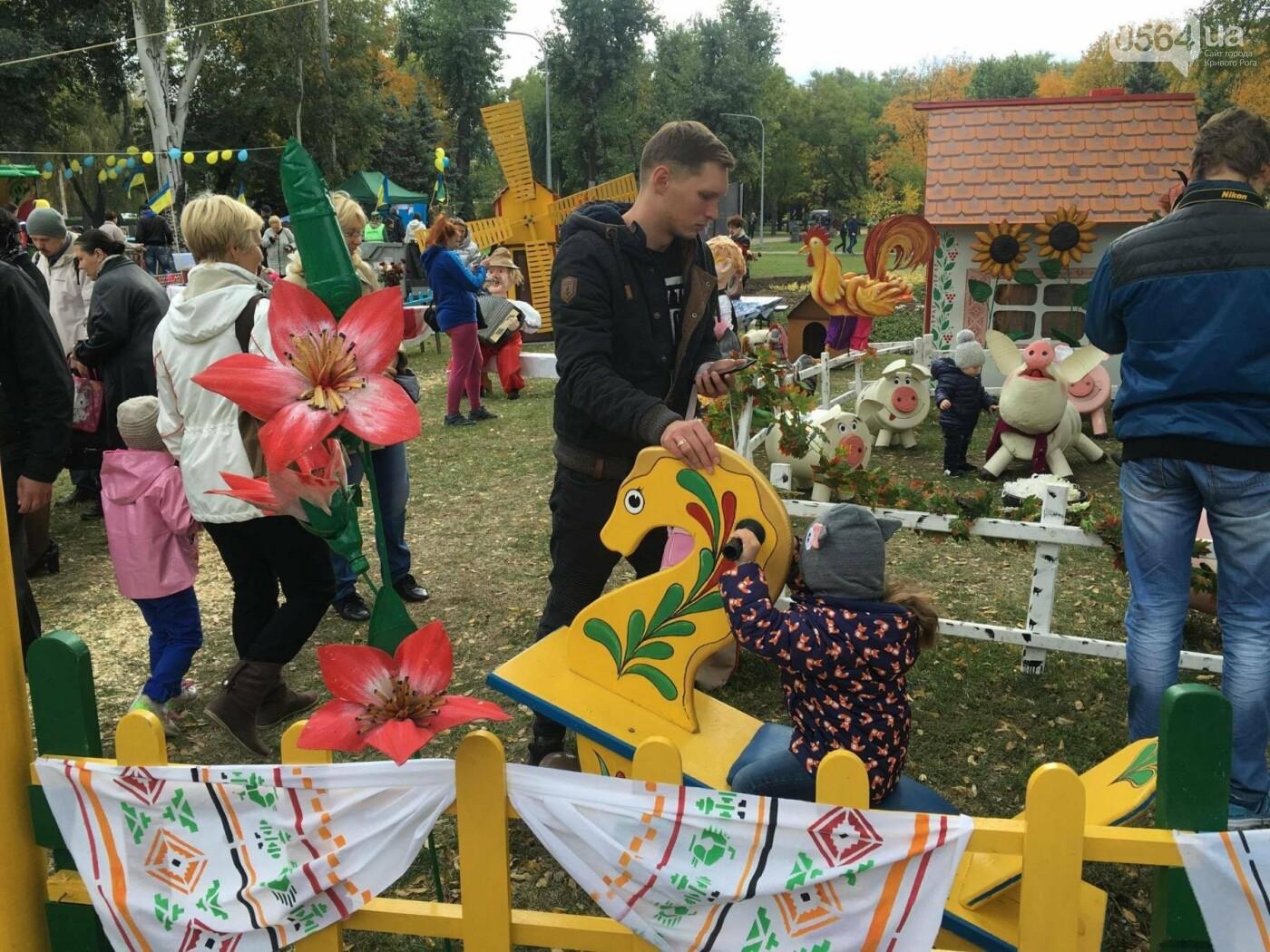Тысячи криворожан отмечают День украинского козачества на Фестивале в парке Героев (ФОТО, ВИДЕО), фото-22