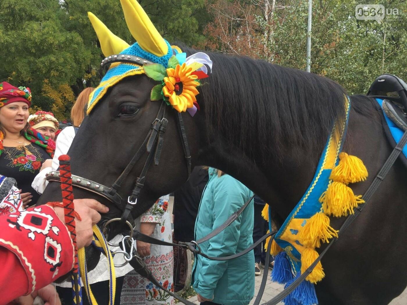 Тысячи криворожан отмечают День украинского козачества на Фестивале в парке Героев (ФОТО, ВИДЕО), фото-19