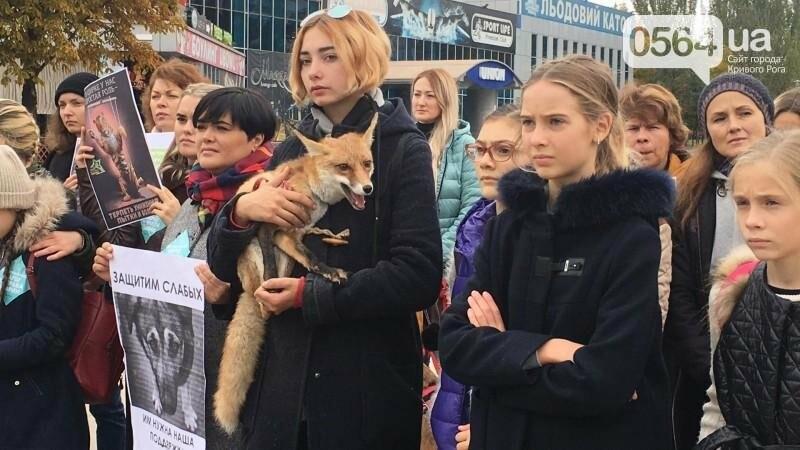 """""""Остановим страдания животных"""": криворожане вышли на Марш в поддержку братьев наших меньших (ФОТО, ВИДЕО), фото-8"""