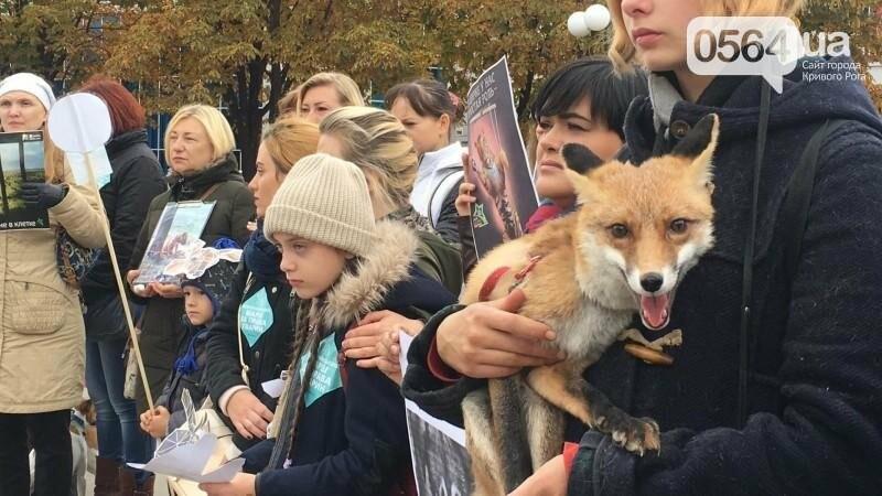 """""""Остановим страдания животных"""": криворожане вышли на Марш в поддержку братьев наших меньших (ФОТО, ВИДЕО), фото-15"""