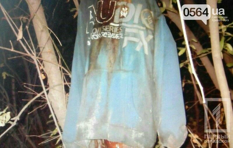 """В Кривом Роге: упавшее дерево убило человека, найдены останки мужчины, встретились """"коммунизм"""" с """"декоммунизацией"""", фото-2"""