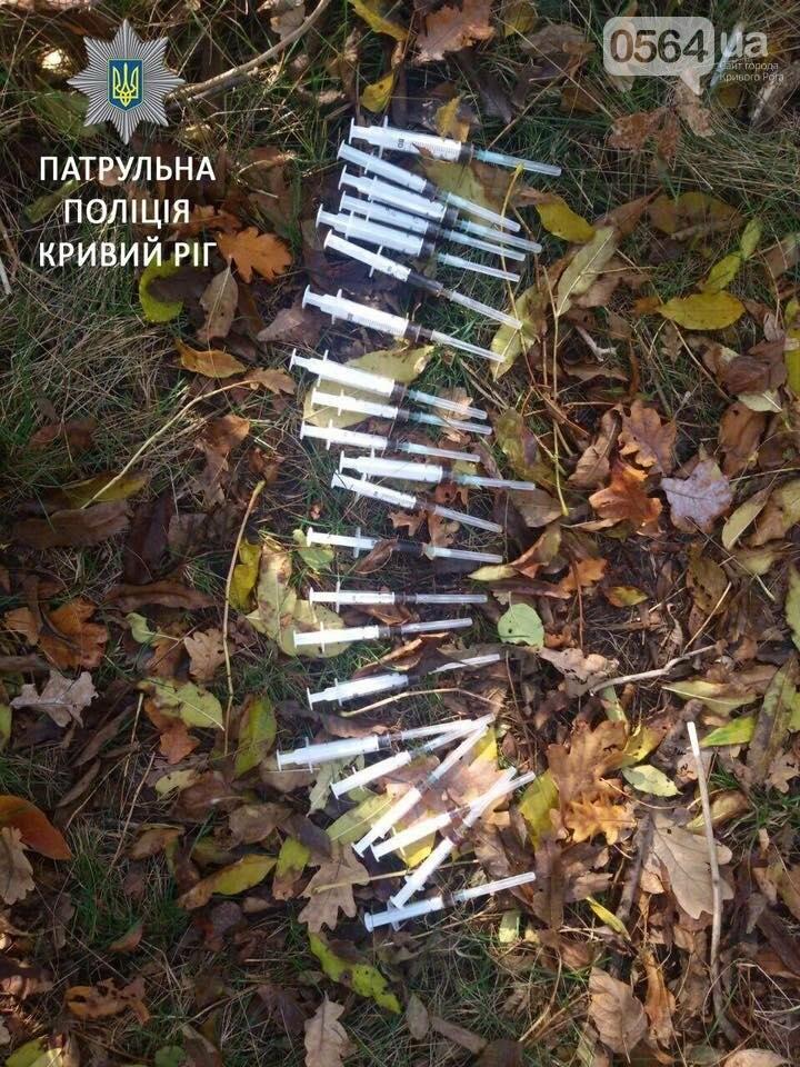 """Помимо грибов, в криворожских посадках находят наркоторговцев с """"ширкой"""" (ФОТО), фото-2"""