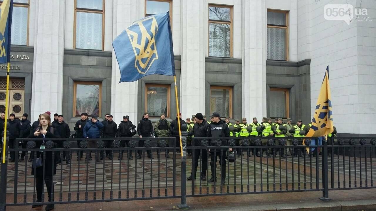 "Криворожане митингуют перед Верховной Радой ""за политреформу"" (ФОТО), фото-8"