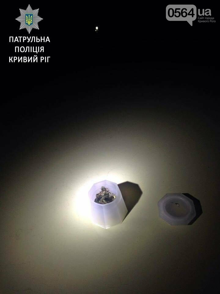 Под утро в Кривом Роге задержали водителя в неадекватном состоянии (ФОТО), фото-3