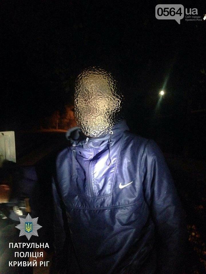Под утро в Кривом Роге задержали водителя в неадекватном состоянии (ФОТО), фото-2