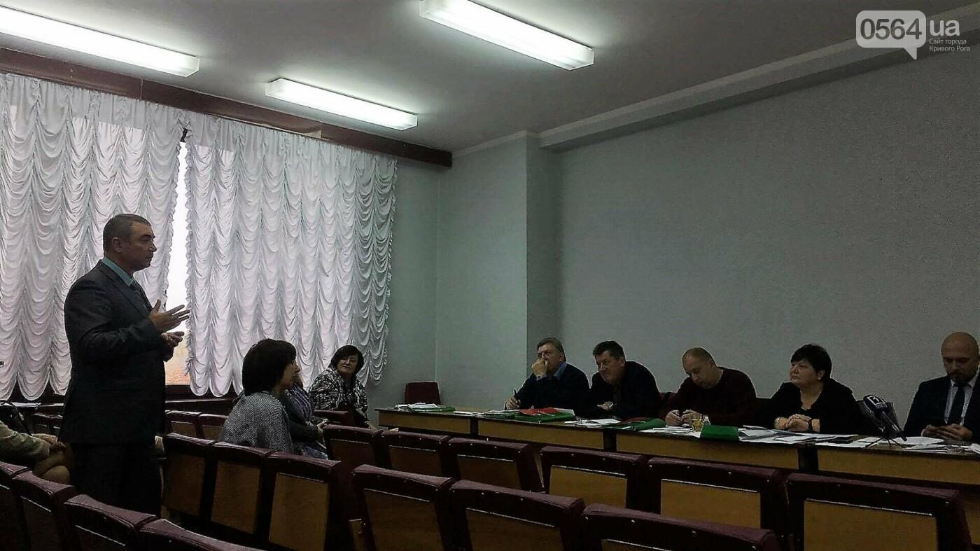 """Управлять делами криворожского исполкома предлагают женщине, """"пережившей"""" трех министров (ФОТО), фото-3"""