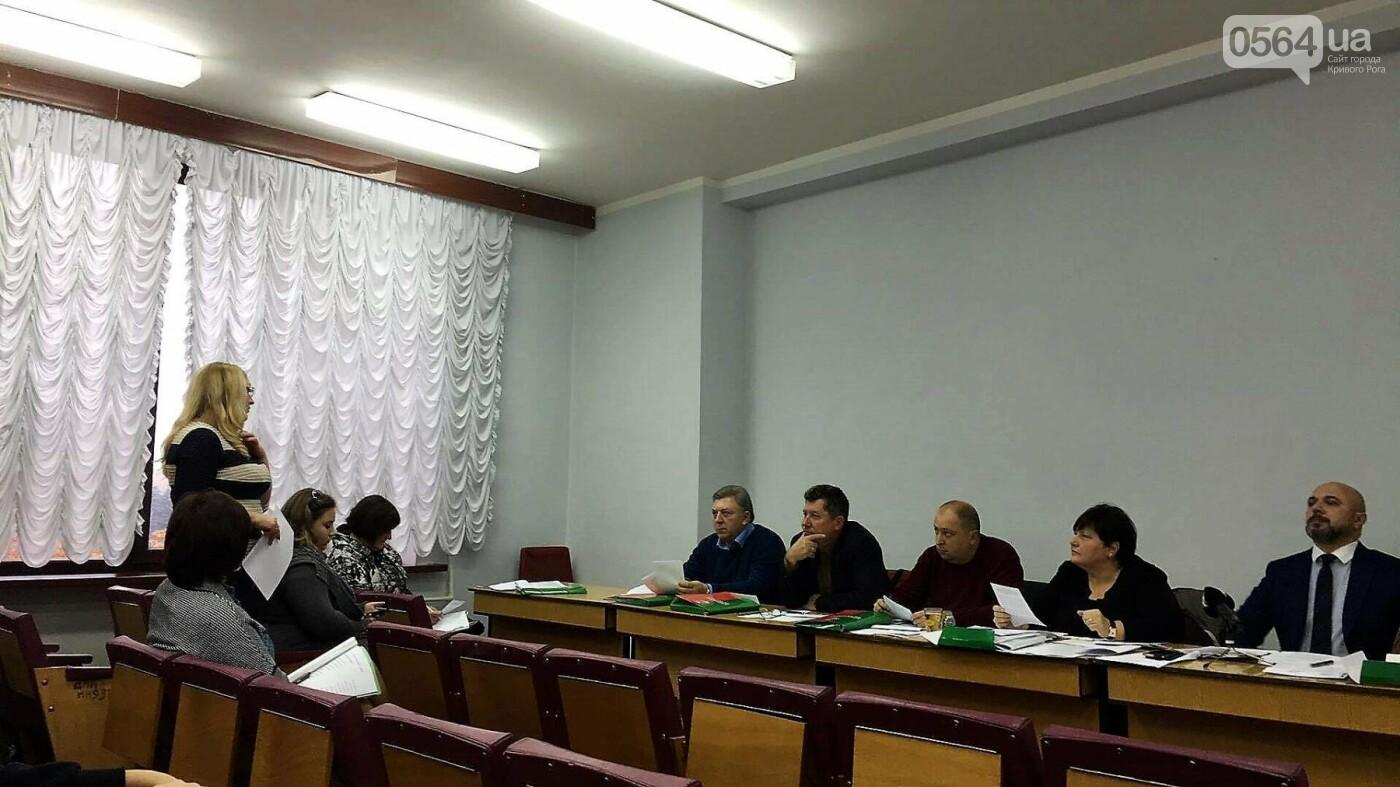 """Управлять делами криворожского исполкома предлагают женщине, """"пережившей"""" трех министров (ФОТО), фото-4"""