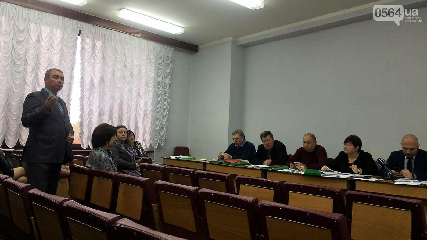 """Управлять делами криворожского исполкома предлагают женщине, """"пережившей"""" трех министров (ФОТО), фото-2"""
