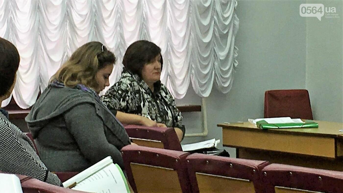 Криворожские чиновники заверили: Сделаем все возможное чтобы успеть освоить бюджетные средства (ФОТО), фото-2