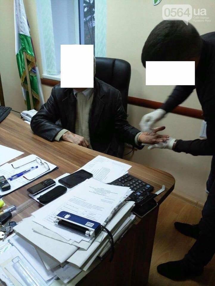 На Днепропетровщине за вымогательство задержали двух подполковников полиции и налоговика (ФОТО, ВИДЕО), фото-4