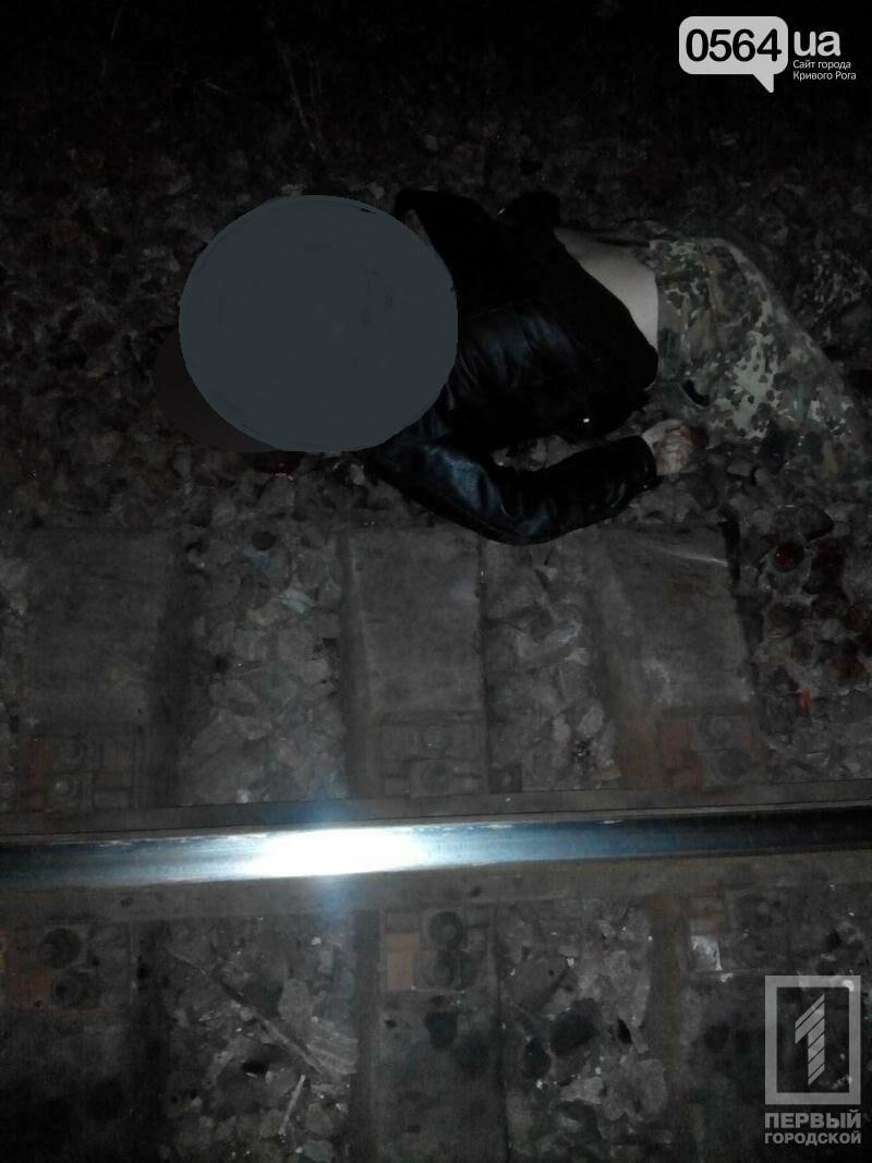 """В Кривом Роге: мужчине поезд снес голову, депутаты решили спасать """"Горицвіт"""" от террора"""" и уcтановить GPS на трамваи, , фото-1"""