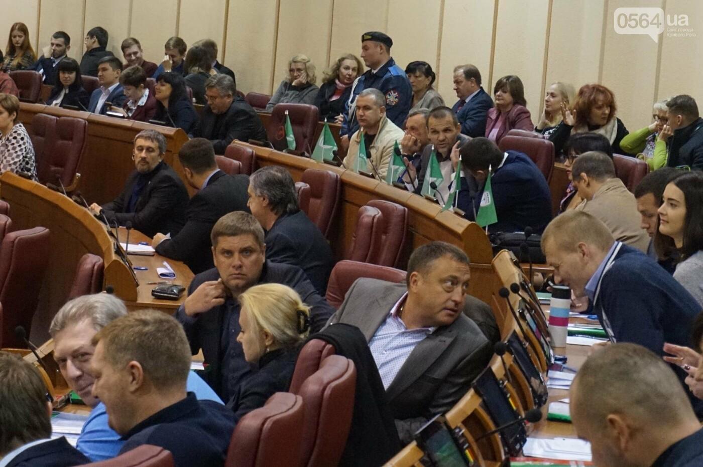 В Кривом Роге началась сессия. Впервые после обысков появилась Ольга Бабенко (ФОТО), фото-6