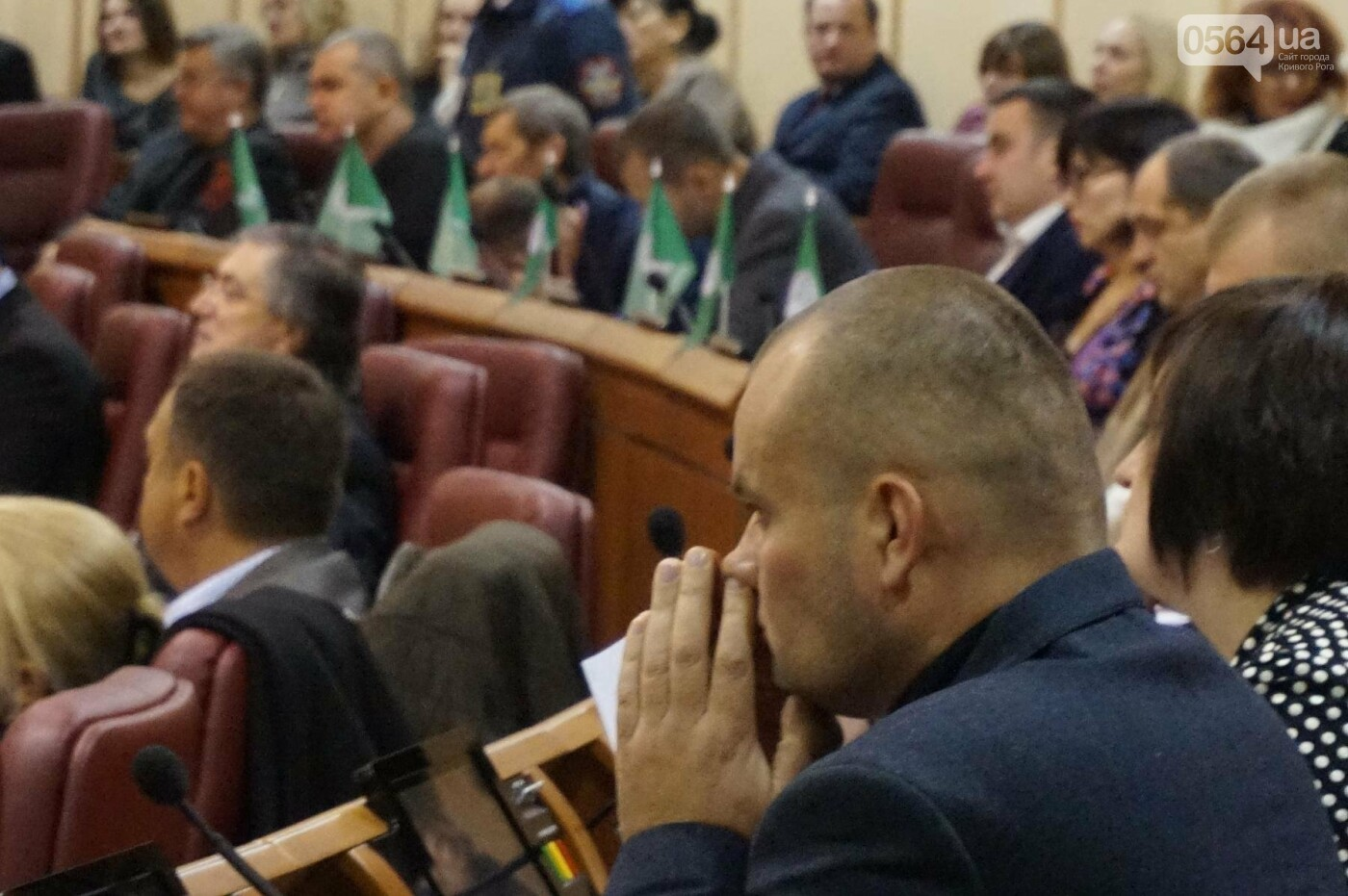 Татьяну Малую назначили управделами Криворожского горсовета (ФОТО), фото-5