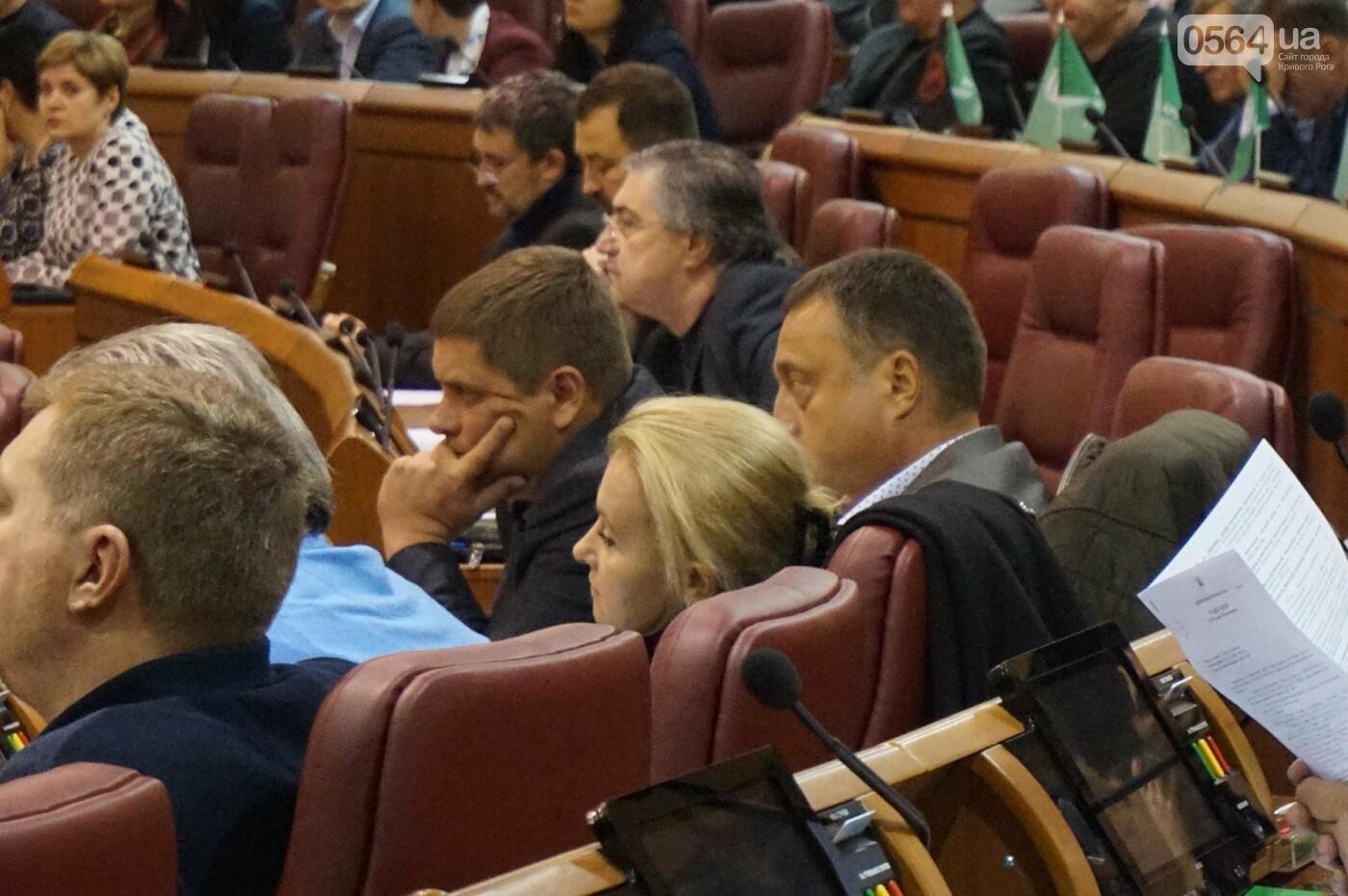 Татьяну Малую назначили управделами Криворожского горсовета (ФОТО), фото-3