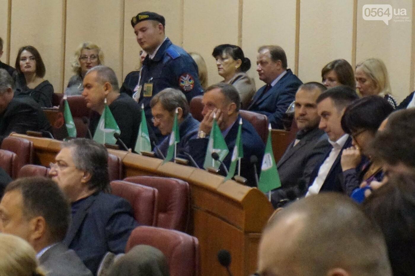 Татьяну Малую назначили управделами Криворожского горсовета (ФОТО), фото-6