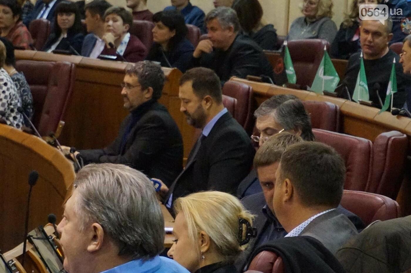 Татьяну Малую назначили управделами Криворожского горсовета (ФОТО), фото-4