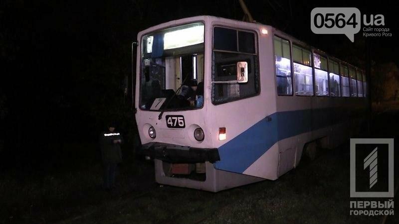 В Кривом Роге: трамвай перерезал женщине ногу, дерево рухнуло на авто, сгорели 2 машины, фото-2