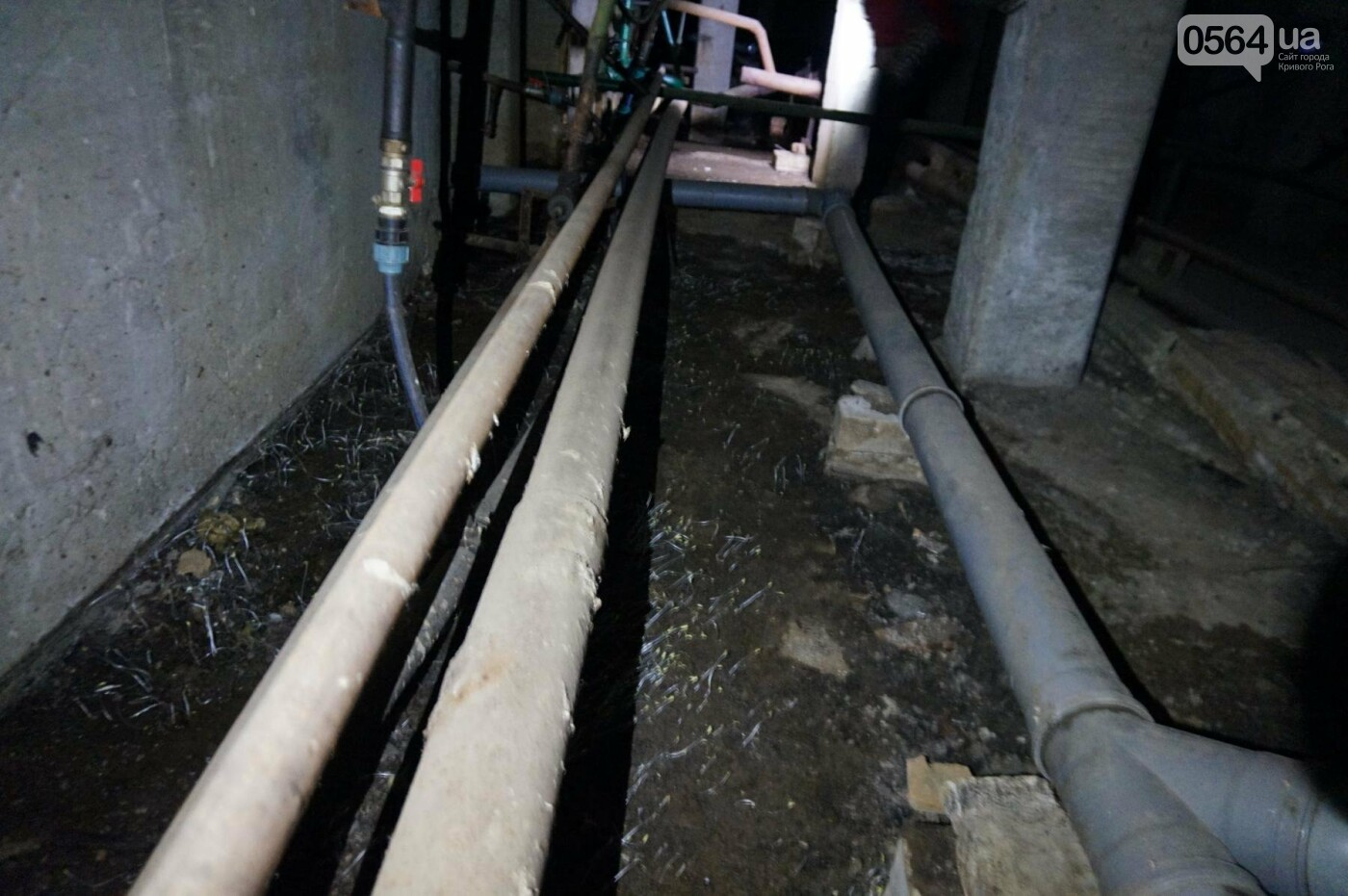 Криворожскую многоэтажку затопило фекалиями (ФОТО, ВИДЕО), фото-7