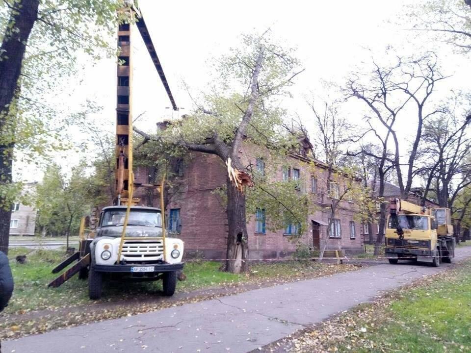 В Ингулецком районе Кривого Рога на жилой двухэтажный дом рухнуло дерево (ФОТО), фото-2