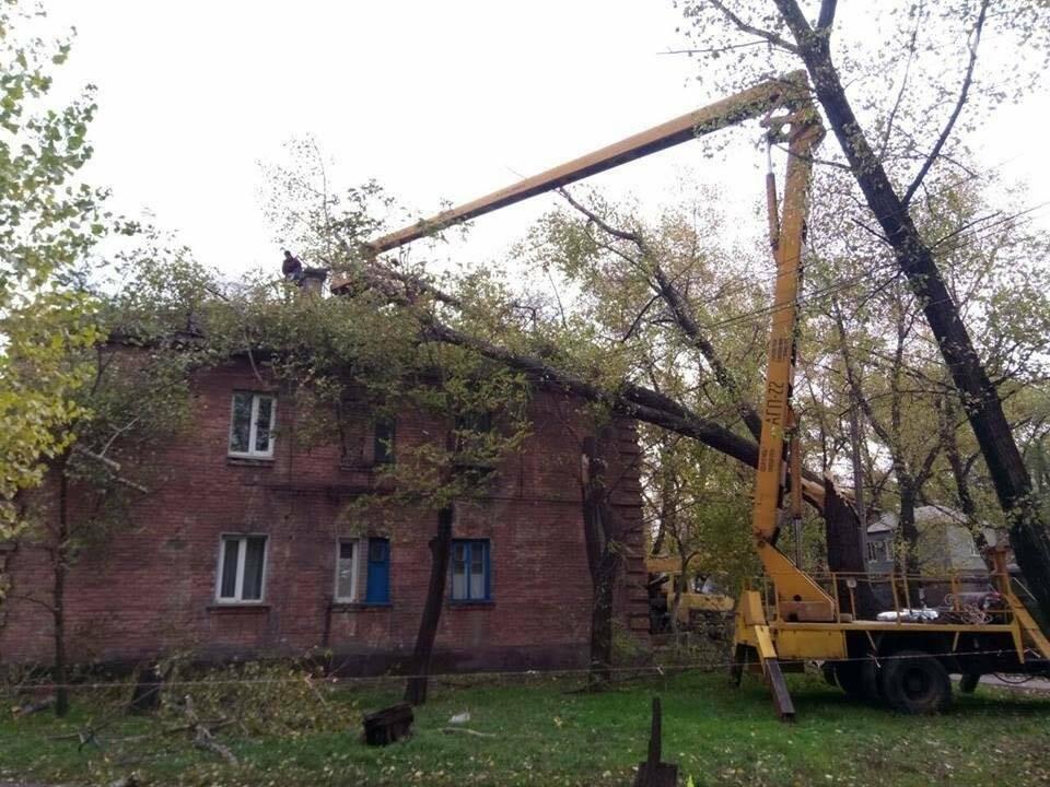 В Ингулецком районе Кривого Рога на жилой двухэтажный дом рухнуло дерево (ФОТО), фото-1