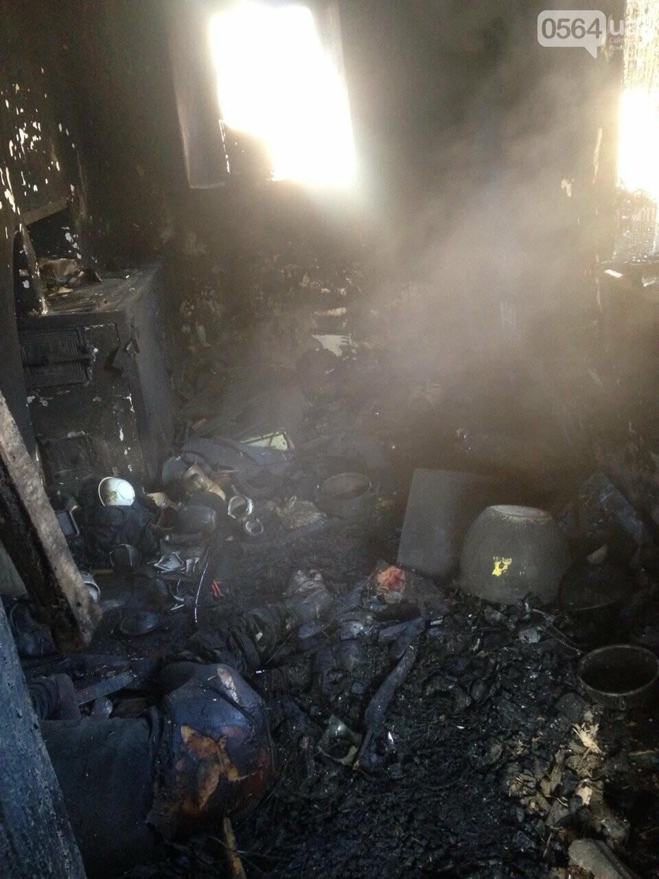 В собственном доме заживо сгорел житель Кривого Рога (ФОТО 18+), фото-1