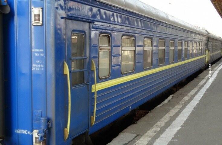 В Кривом Роге: уволили полицейского, пойманного на взятке, вырубали можжевельник с крысами, на поезд упала электроопора, фото-2