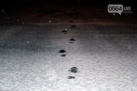 В Кривом Роге грабитель не смог сбежать от полиции из-за снега (ФОТО), фото-2