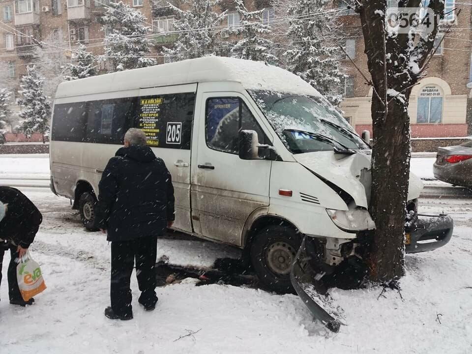ДТП в Кривом Роге: маршрутное такси вылетело с дороги и врезалось в дерево (ФОТО), фото-3