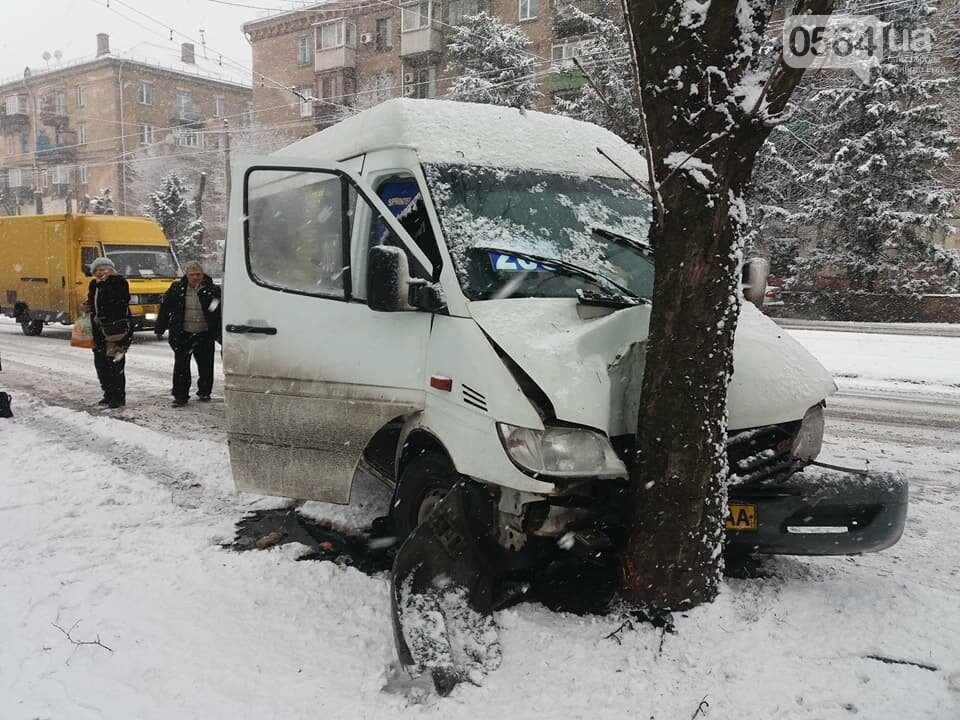 ДТП в Кривом Роге: маршрутное такси вылетело с дороги и врезалось в дерево (ФОТО), фото-2