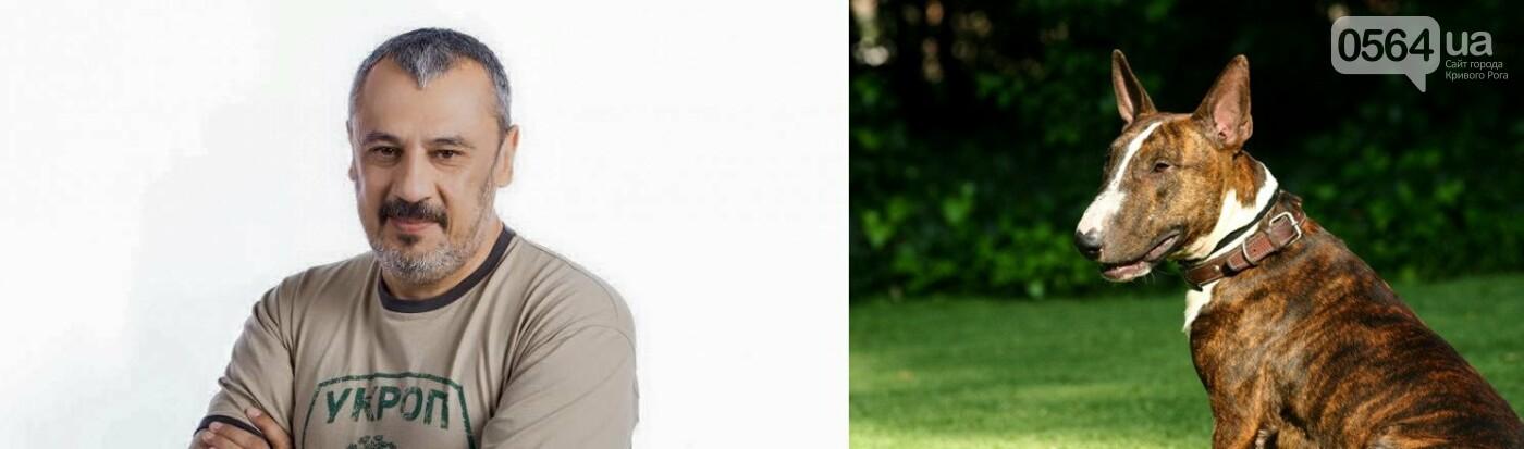 Бульдоги, бультерьер и мопс: ТОП-10 Криворожского горсовета в образах хозяйки года (ФОТО), фото-5