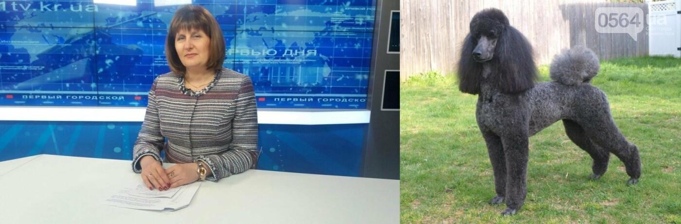 Бульдоги, бультерьер и мопс: ТОП-10 Криворожского горсовета в образах хозяйки года (ФОТО), фото-7