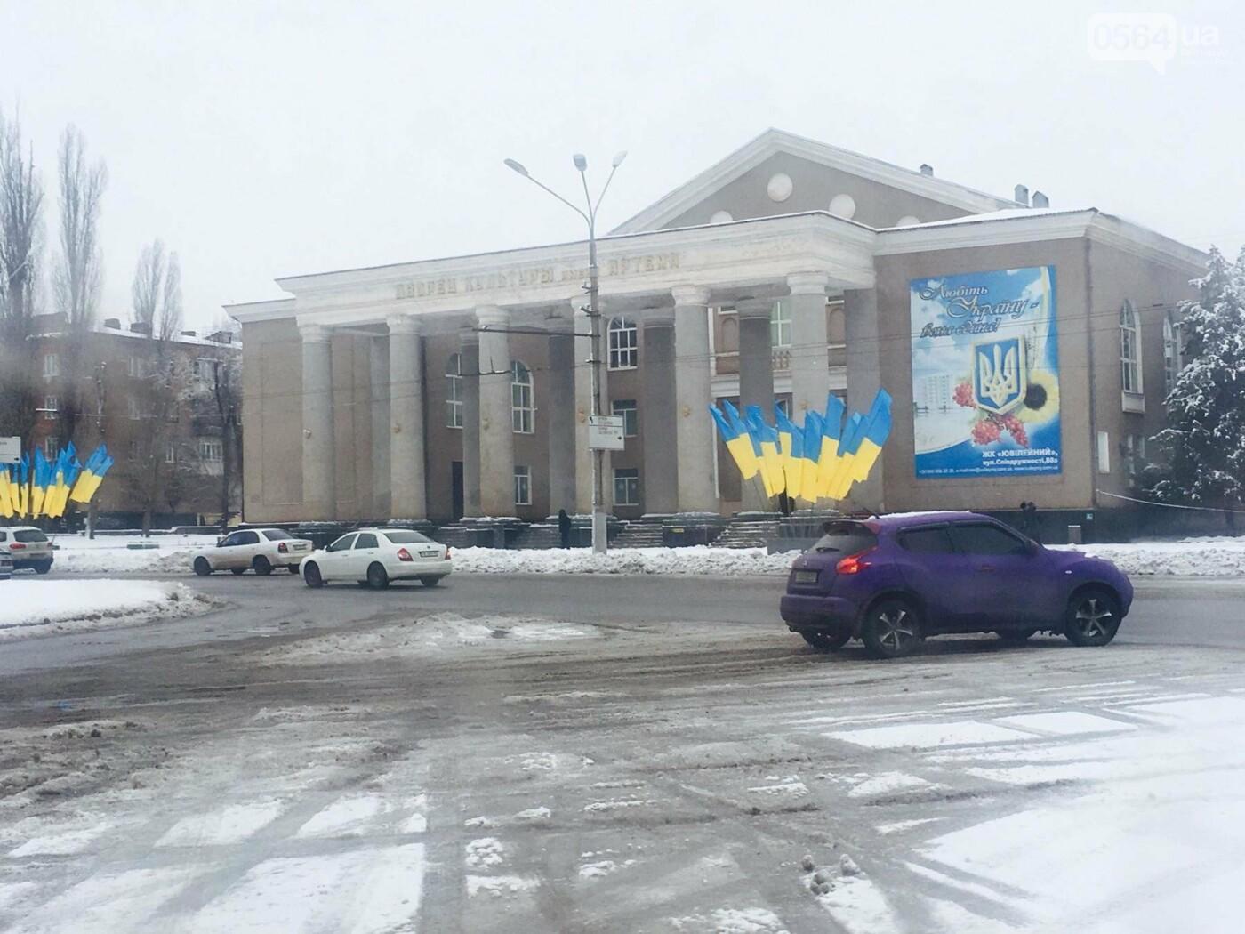 К вековому юбилею Украинской независимости Кривой Рог украсили флагами национальных цветов, фото-7