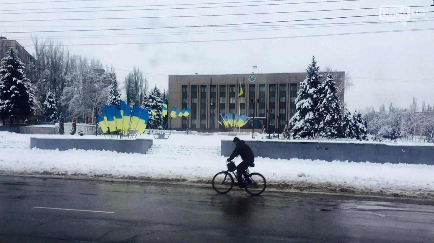 К вековому юбилею Украинской независимости Кривой Рог украсили флагами национальных цветов, фото-6