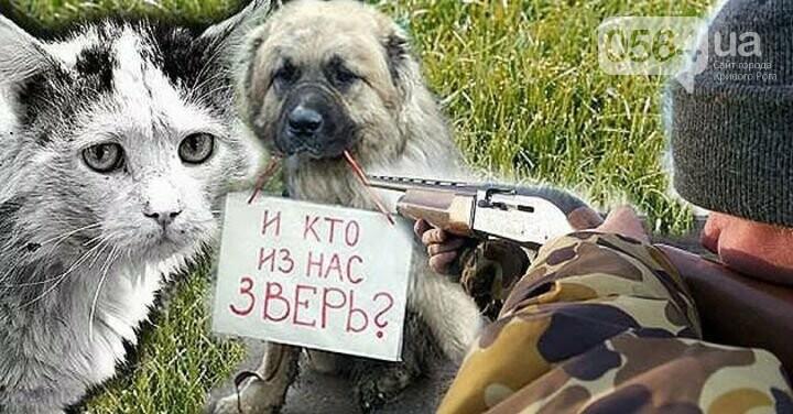 В Криввом Роге: водитель умер прямо в маршрутке, нашли труп животного без шкуры, судят осквернителя флага Украины, фото-2