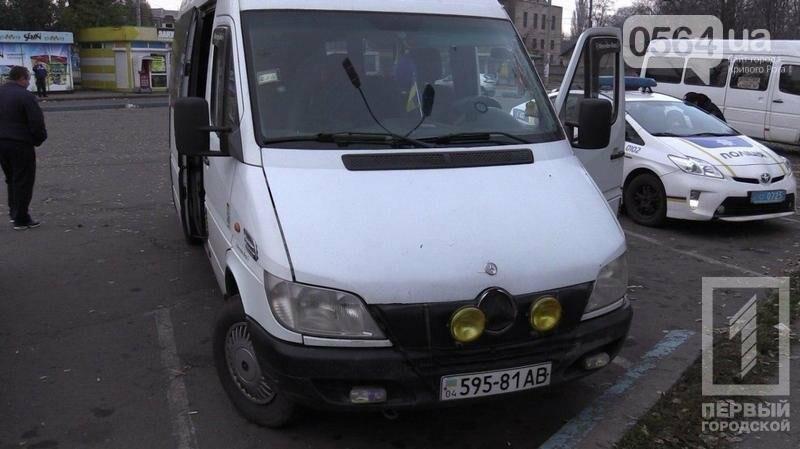 В Криввом Роге: водитель умер прямо в маршрутке, нашли труп животного без шкуры, судят осквернителя флага Украины, фото-1