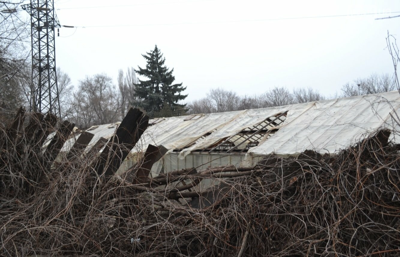 Исторический жилфонд в Кривом Роге: Дырявая кровля, два контейнера для мусора и пристанище для бомжей (ФОТО), фото-13