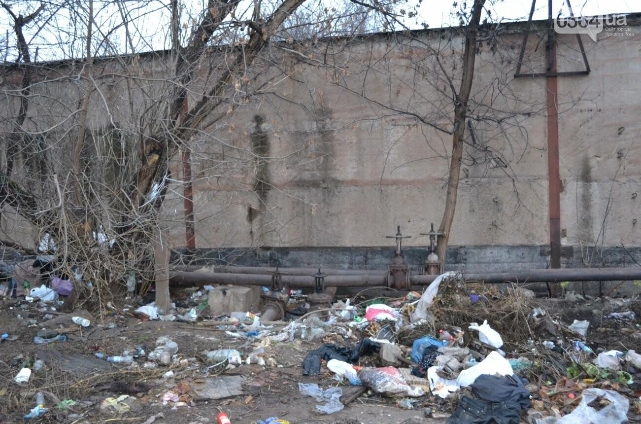Исторический жилфонд в Кривом Роге: Дырявая кровля, два контейнера для мусора и пристанище для бомжей (ФОТО), фото-7