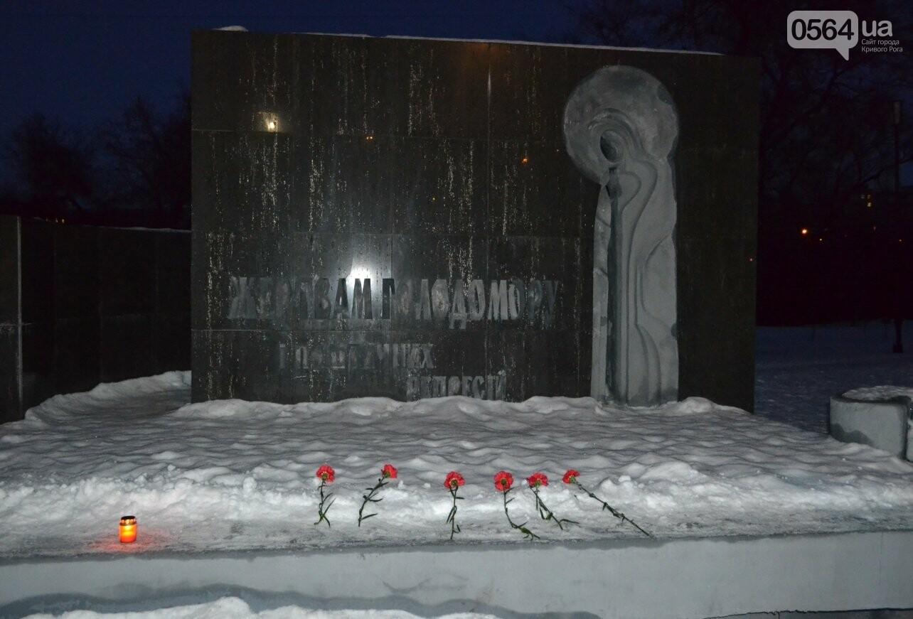 Жители Кривого Рога чествуют память Героев Крут (ФОТО) (ОБНОВЛЕНО), фото-11