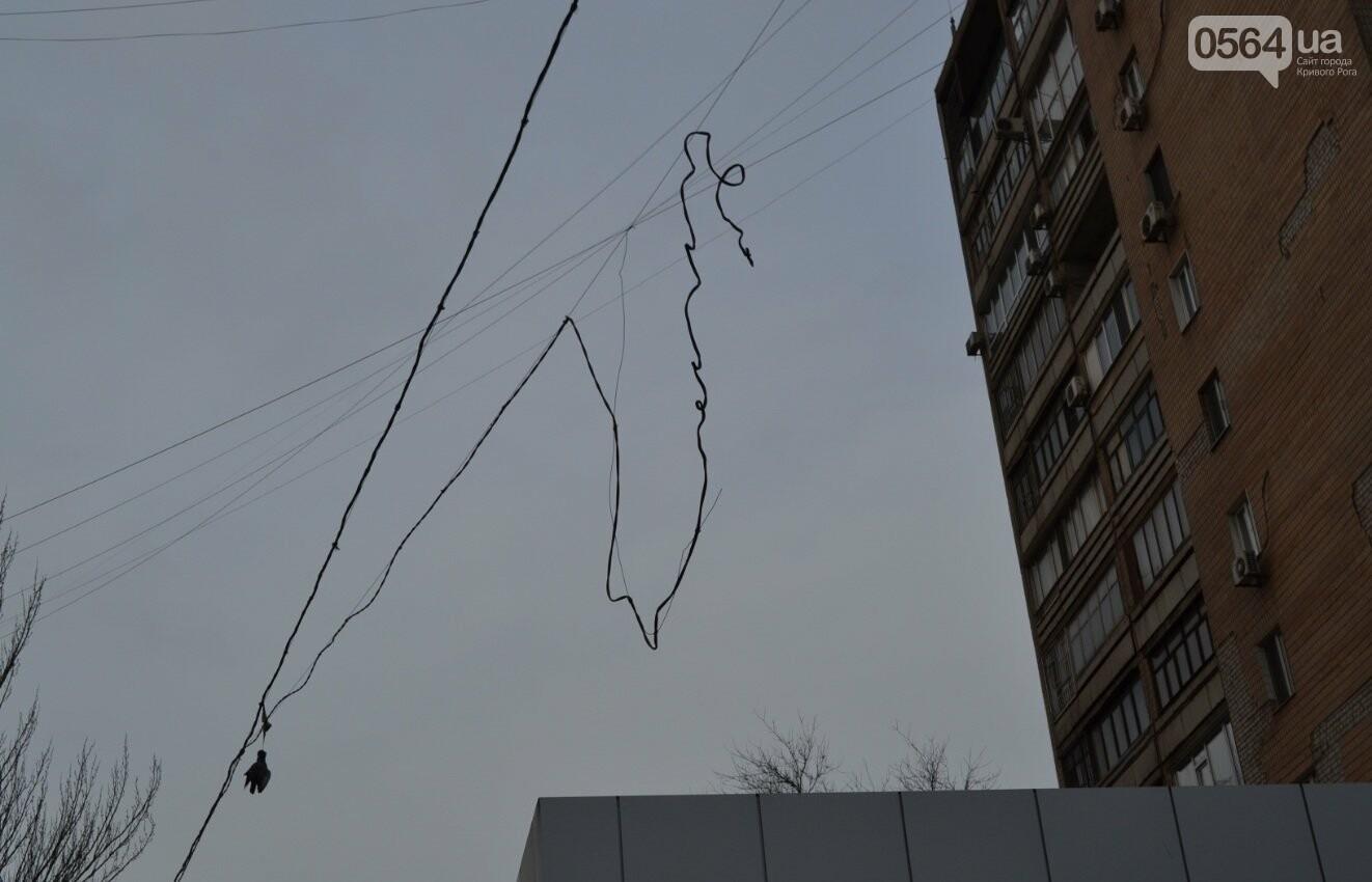 Голубь на проспекте Мира: На электросетях в центре Кривого Рога которую неделю висит несчастная птица (ФОТО 18+), фото-1