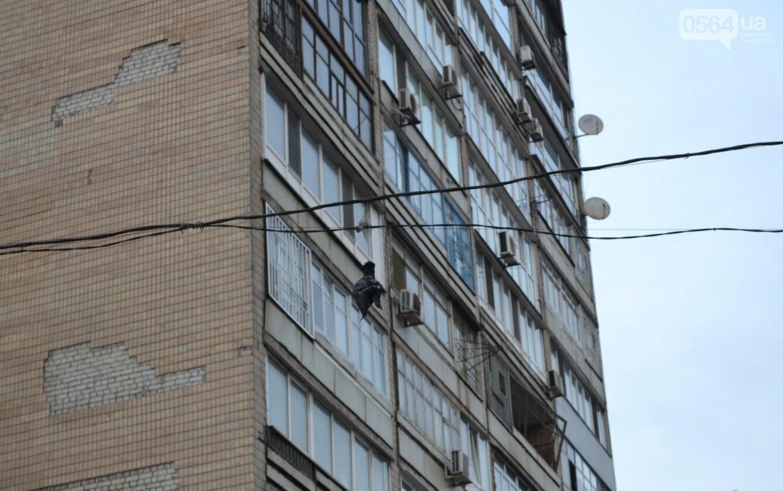 Голубь на проспекте Мира: На электросетях в центре Кривого Рога которую неделю висит несчастная птица (ФОТО 18+), фото-5