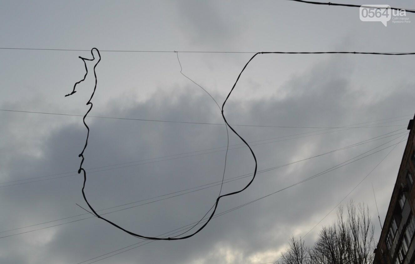 Голубь на проспекте Мира: На электросетях в центре Кривого Рога которую неделю висит несчастная птица (ФОТО 18+), фото-2